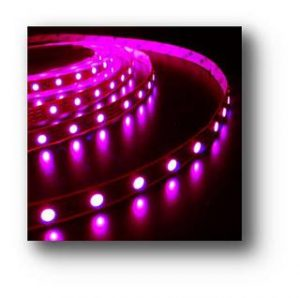 LAMPU LED Strip 3528 Outdoor